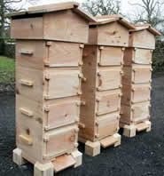 Warre Hive Plans