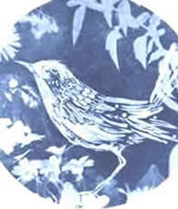 a Quirky Workshop with Cyanotype printing by  Kim Tillyer at Greystoke Cycle Cafe